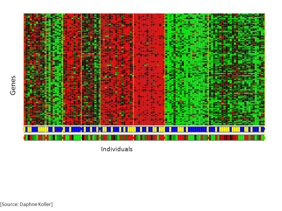 Genes Individuals [Source: Daphne Koller]